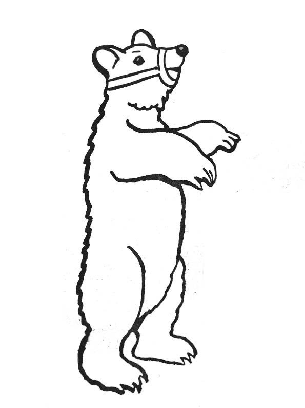 Coloriage et dessins gratuits Ours de Cirque à imprimer