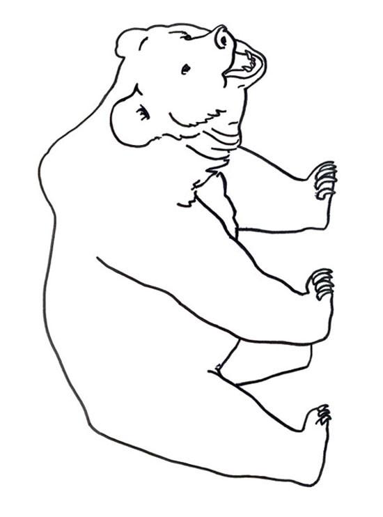 Coloriage ours facile dessin gratuit imprimer - Dessin ours facile ...