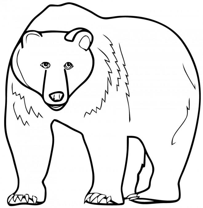 Coloriage ours g ant dessin gratuit imprimer - Dessin ours facile ...