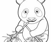 Coloriage et dessins gratuit Bébé Panda à imprimer
