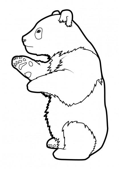 Coloriage et dessins gratuits Panda debout à imprimer