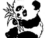 Coloriage Panda en mangeant
