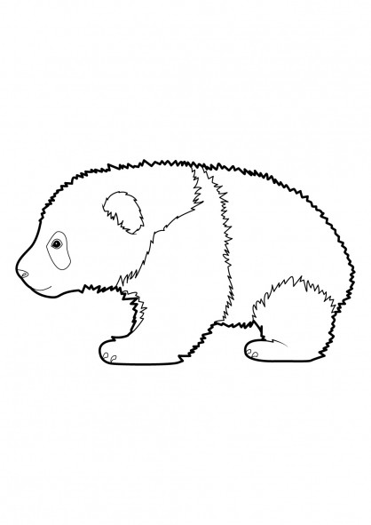 Coloriage et dessins gratuits Panda en marchant à imprimer