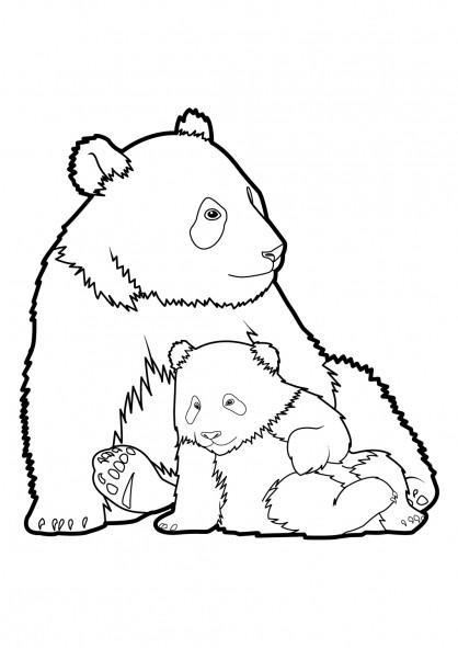 Coloriage et dessins gratuits Panda et son petit à imprimer