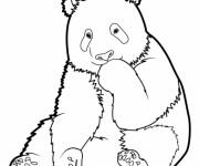 Coloriage et dessins gratuit Panda pour enfant à imprimer
