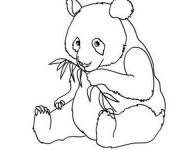 Coloriage et dessins gratuit Panda simple à imprimer