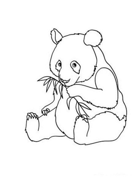 Coloriage Panda Simple Dessin Gratuit à Imprimer