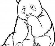 Coloriage et dessins gratuit Panda timide à imprimer