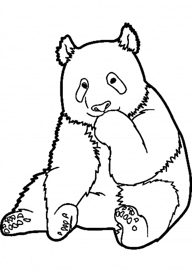 Coloriage et dessins gratuits Panda timide à imprimer
