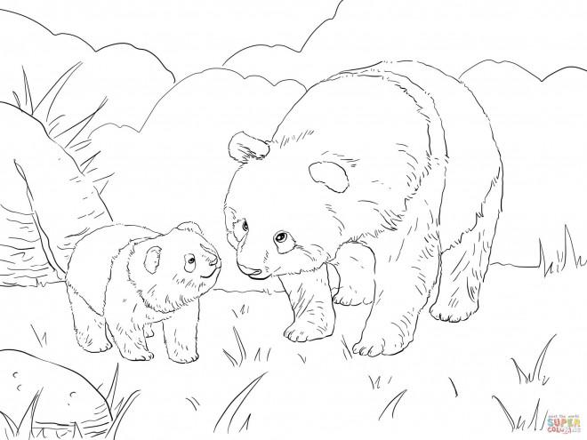 Coloriage et dessins gratuits Père Panda et son fils à imprimer