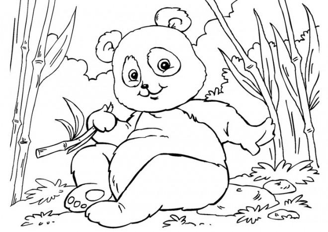 Coloriage et dessins gratuits Petit Panda s'amuse à imprimer