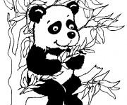 Coloriage et dessins gratuit Petit Panda sur l'arbre à imprimer