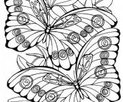 Coloriage dessin  Papillon 3