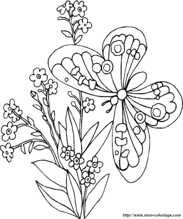 Coloriage et dessins gratuits Papillon dans la nature à imprimer
