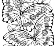 Coloriage et dessins gratuit Papillon en couleur à imprimer