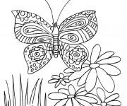 Coloriage Papillon et fleur