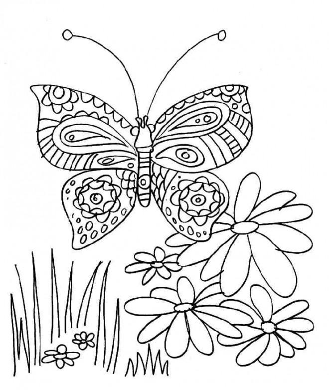 Coloriage papillon et fleur dessin gratuit imprimer - Coloriage de papillon a imprimer gratuit ...