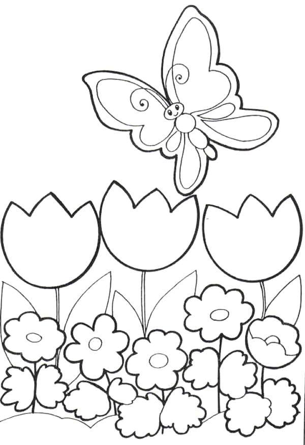 Coloriage et dessins gratuits Papillon souriant à imprimer