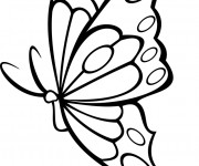 Coloriage Papillon vecteur