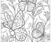 Coloriage Papillons multicolores