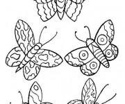 Coloriage et dessins gratuit Papillons stylisés à imprimer