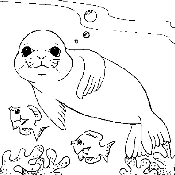 Coloriage et dessins gratuits Phoque dans la mer à imprimer