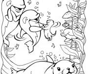 Coloriage Phoque et ses amis dans la mer