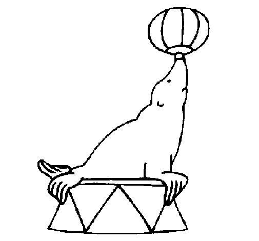 Coloriage et dessins gratuits Phoque joue au ballon au cirque à imprimer