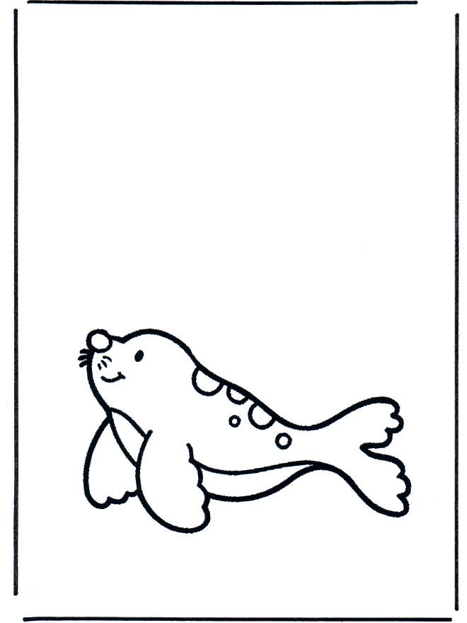 Coloriage et dessins gratuits Un petit Phoque à imprimer