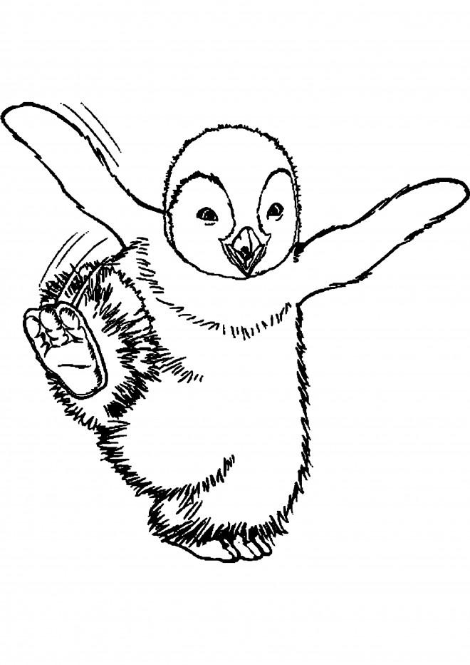 Coloriage et dessins gratuits Petit pingouin danse à imprimer
