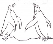 Coloriage dessin  Pingouin 16