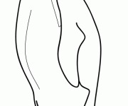 Coloriage dessin  Pingouin 9