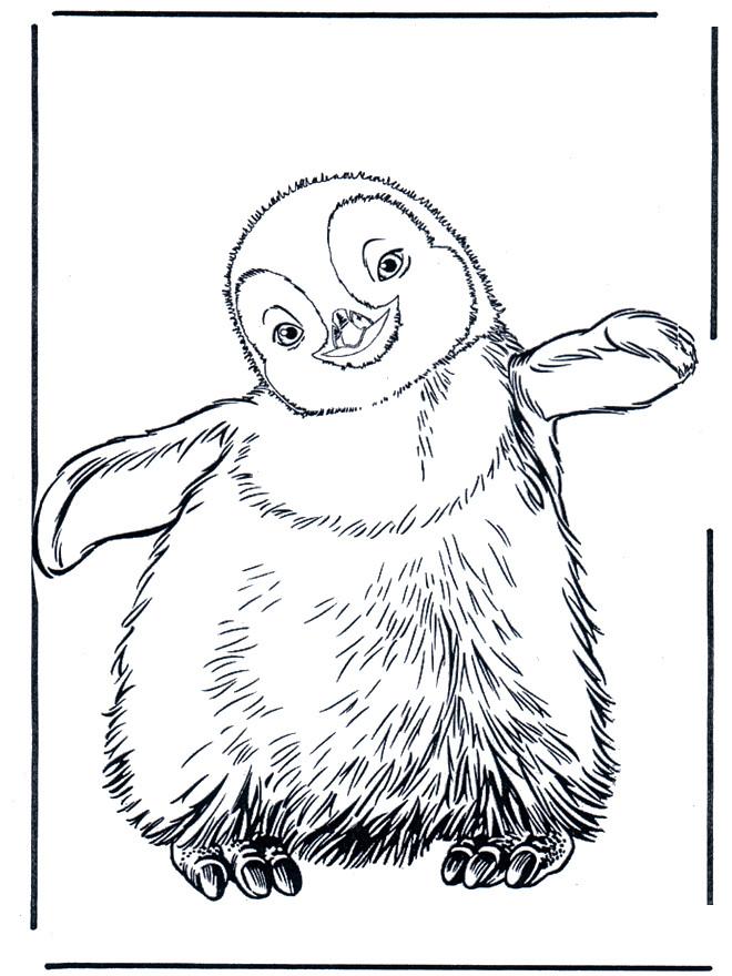 Coloriage pingouin dessin anim dessin gratuit imprimer - Dessin anime les pingouins ...
