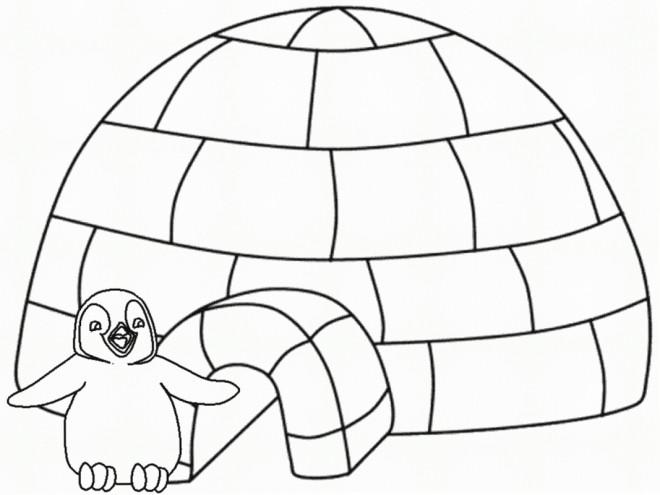 Coloriage et dessins gratuits Pingouin devant sa maison à imprimer