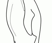 Coloriage et dessins gratuit Pingouin en ligne à imprimer