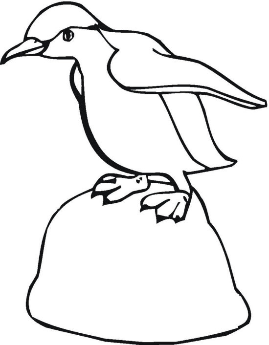 Coloriage et dessins gratuits Pingouin marche à imprimer
