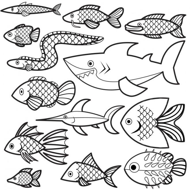 Coloriage Les Poisson vecteur dessin gratuit à imprimer