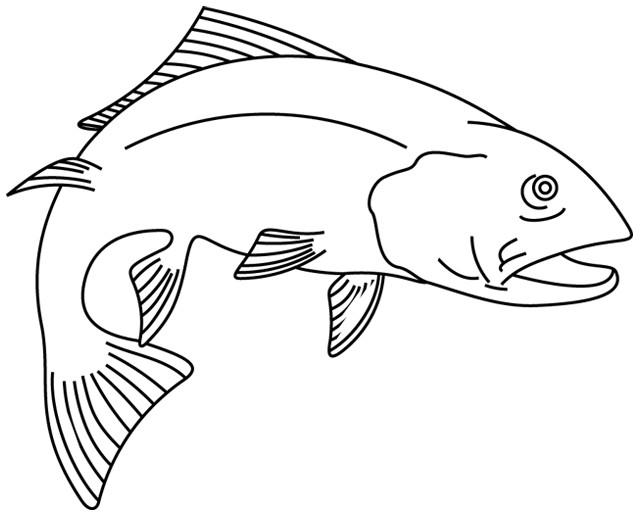 Coloriage poisson japonais dessin gratuit imprimer - Image de poisson a imprimer ...