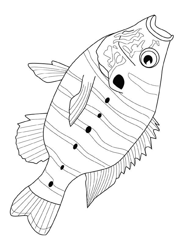 Coloriage et dessins gratuits Poisson rayé à imprimer