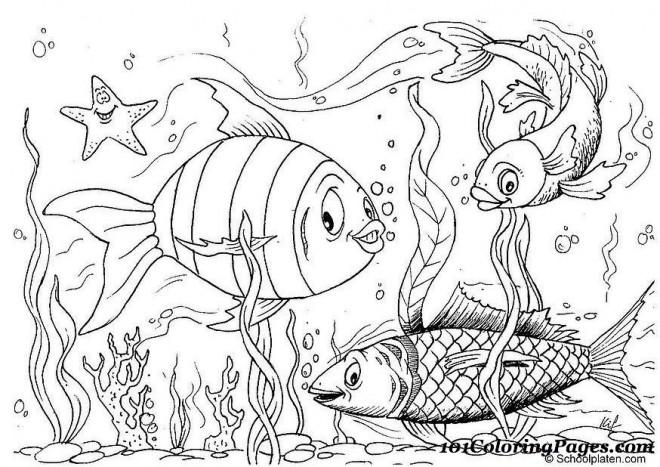 Coloriage poissons dessin anim dessin gratuit imprimer - Dessin enfant poisson ...