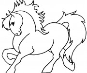 Coloriage Beau Poney