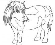 Coloriage et dessins gratuit Poney mange de l'herbe à imprimer