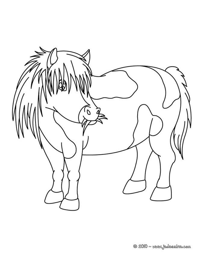 Coloriage et dessins gratuits Poney mange de l'herbe à imprimer