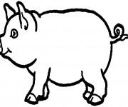 Coloriage et dessins gratuit Porc au crayon à imprimer