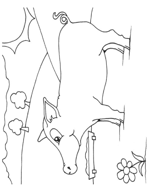 Coloriage et dessins gratuits Porc dans la nature à imprimer