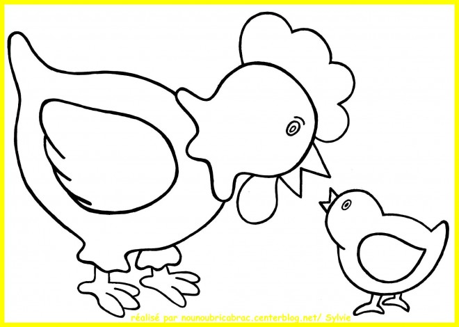 Coloriage et dessins gratuits Poule 13 à imprimer