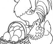 Coloriage Poule 43