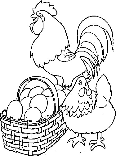 Coloriage et dessins gratuits Poule 43 à imprimer