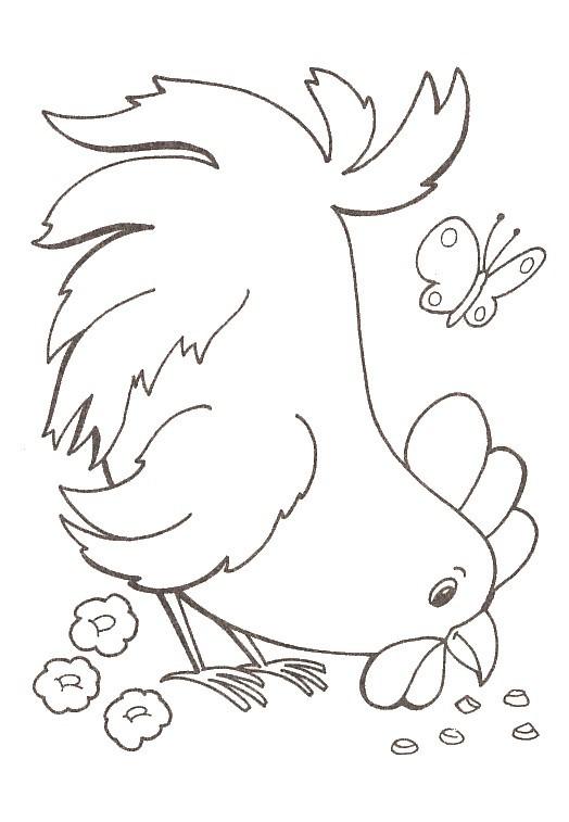 Coloriage et dessins gratuits Poule 47 à imprimer