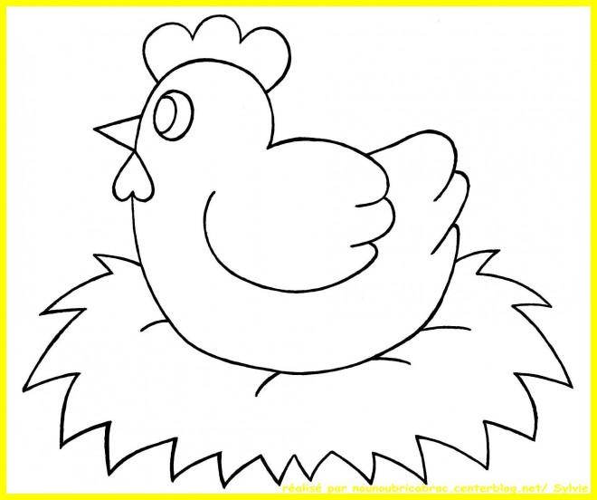 Coloriage Poule 7 dessin gratuit à imprimer